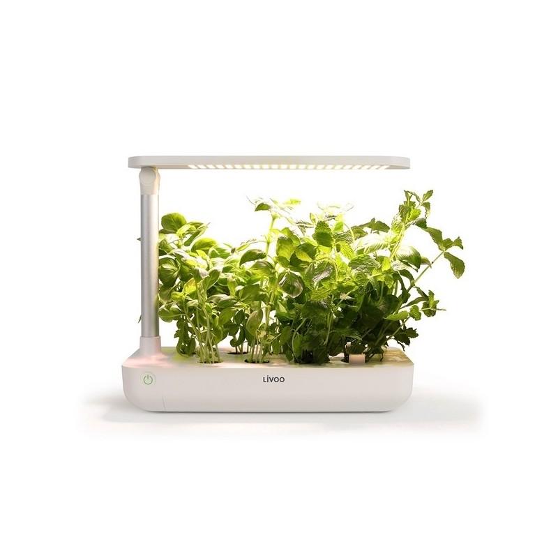 Jardin d'intérieur à prix de gros - Outil de jardinage à prix grossiste