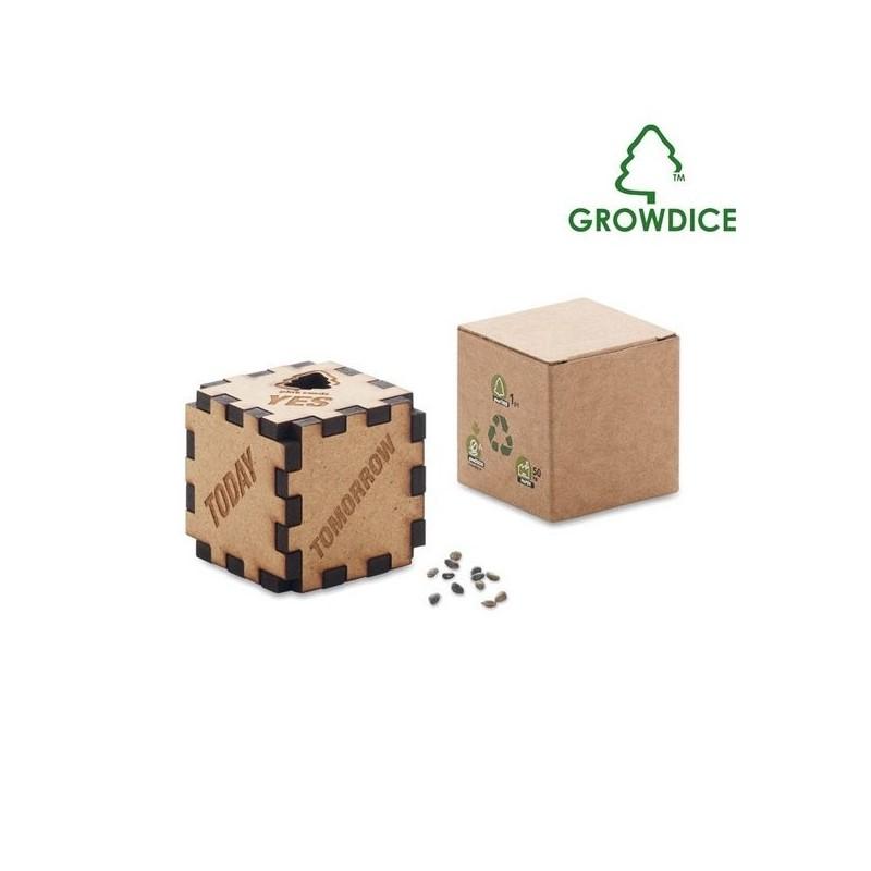 Growdice - Un Dé , Un Pin à prix de gros - Graine à planter à prix grossiste